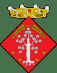 Club de pádel Club Vila de l'Albi