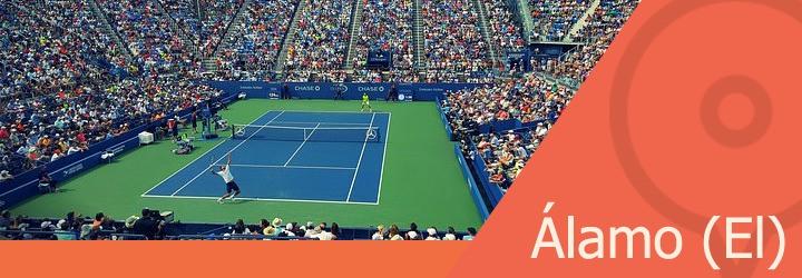 pistas de tenis en alamo el.jpg