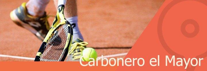 pistas de tenis en carbonero el mayor.jpg