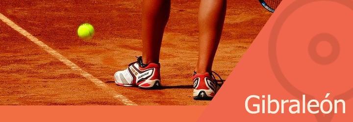 pistas de tenis en gibraleon.jpg