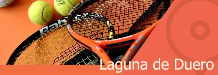 pistas de tenis en laguna de duero.jpg