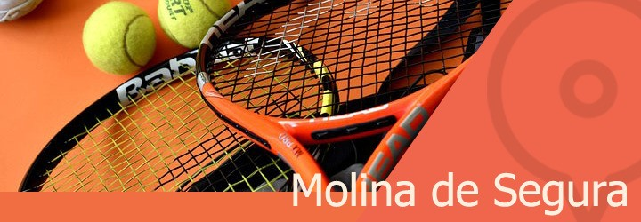 pistas de tenis en molina de segura.jpg