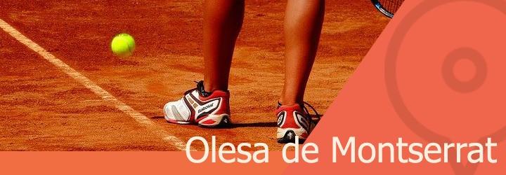 pistas de tenis en olesa de montserrat.jpg