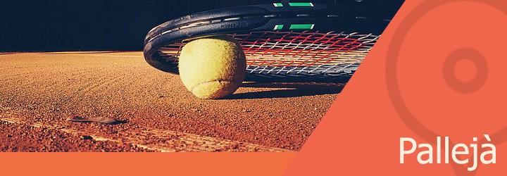 pistas de tenis en palleja.jpg