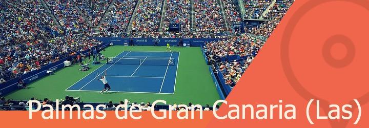 pistas de tenis en palmas de gran canaria las.jpg