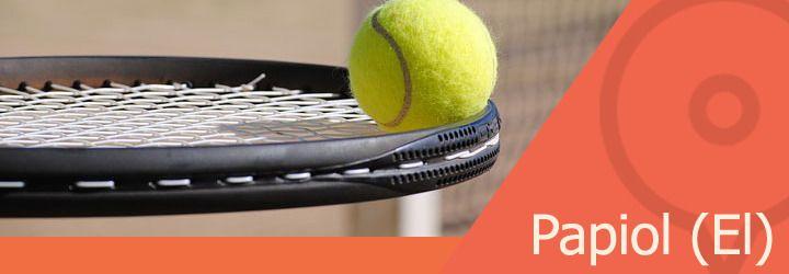 pistas de tenis en papiol el.jpg