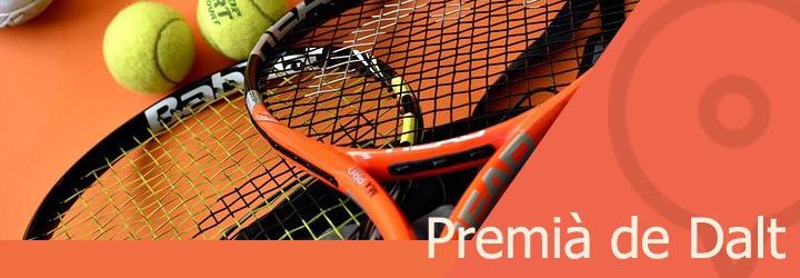 pistas de tenis en premia de dalt.jpg
